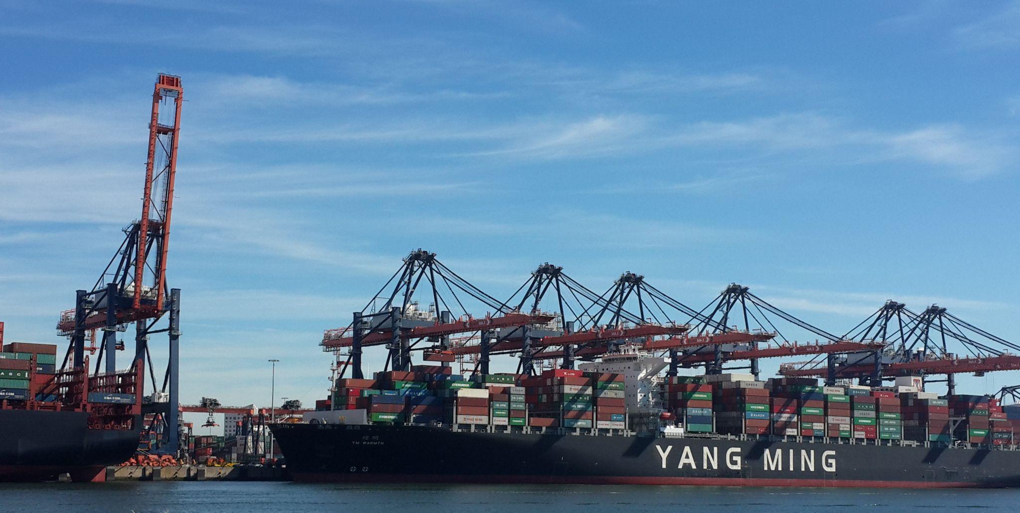 Containerkräne im Rotterdamer Hafen.