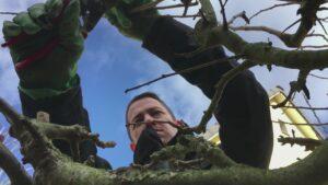 Wohnen am Stadtrand: Gartenarbeit als neues Hobby